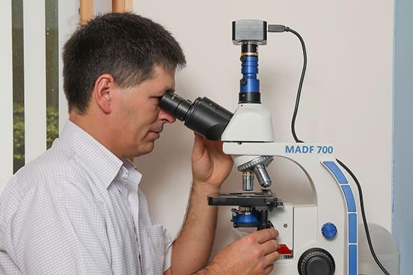 Dunkelfeld - Mikroskop